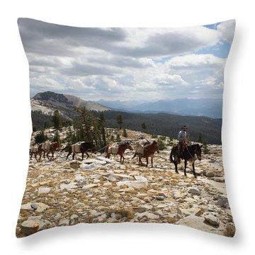 Sierra Trail Throw Pillow