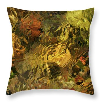 Sight Stream Throw Pillow