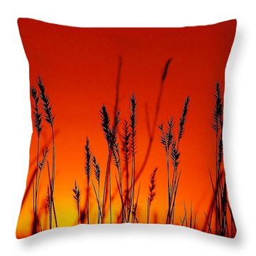 Sign Of The Time Throw Pillow