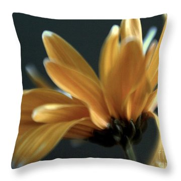 Throw Pillow featuring the photograph Signature Daisy by Mary Lou Chmura