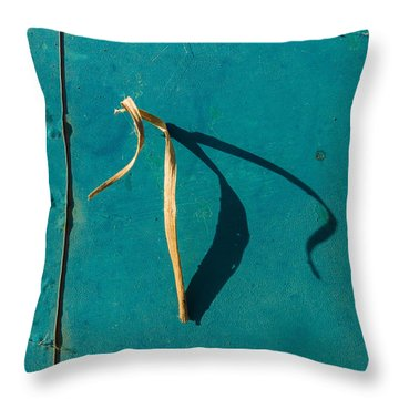Signs-16 Throw Pillow