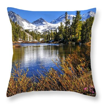 Throw Pillow featuring the photograph Signs Of Spring by Lynn Bauer