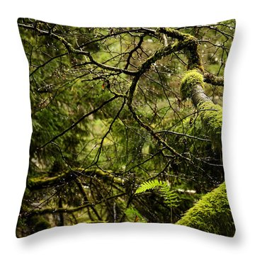 Throw Pillow featuring the photograph Silence In The Green Forest by Lisa Knechtel
