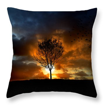 Silence Throw Pillow by Lj Lambert