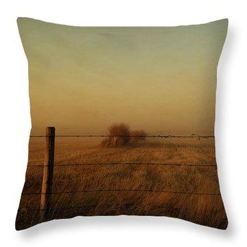 Silence Of Dusk Throw Pillow by Leanna Lomanski