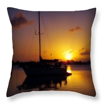 Silence Of Night Throw Pillow by Karen Wiles