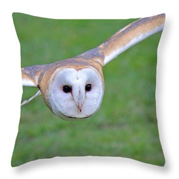 Silent Approach Throw Pillow by Randy Hall