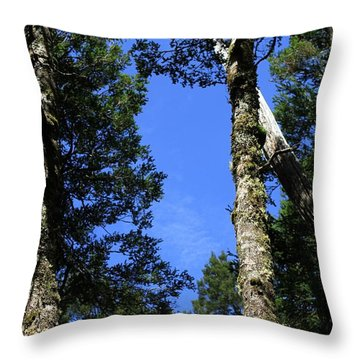 Silent Giants All Profits Go To Hospice Of The Calumet Area Throw Pillow