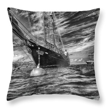 Throw Pillow featuring the photograph Silent Lady by Howard Salmon