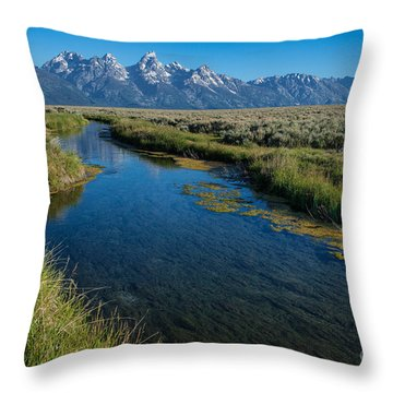 Silent Pathway To The Grand Tetons Throw Pillow by Sandra Bronstein