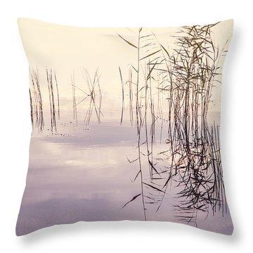 Silent Rhapsody. Sacred Music Throw Pillow by Jenny Rainbow