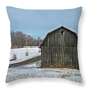 Throw Pillow featuring the photograph Silent Vigil by Christian Mattison