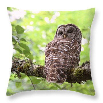 Silent Watcher Of The Woods Throw Pillow
