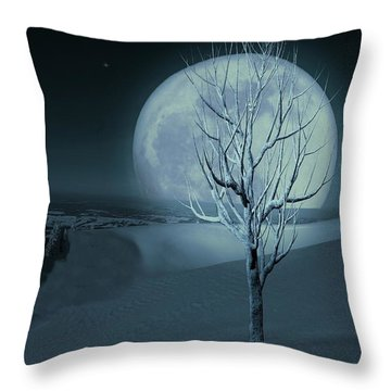Silent Winter Evening  Throw Pillow