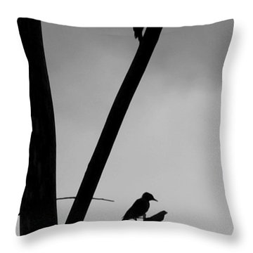 Silhouette 1 Throw Pillow by Joe Faherty