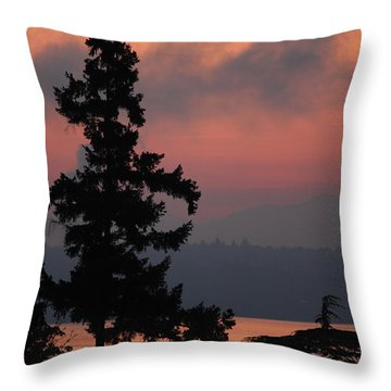Throw Pillow featuring the photograph Silhouette At Sunrise by E Faithe Lester