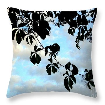 Throw Pillow featuring the photograph Silhouette by Kathy Bassett