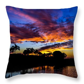 Silhouette Of Color Throw Pillow