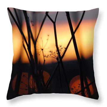 Silhouette Of Old Queens Throw Pillow