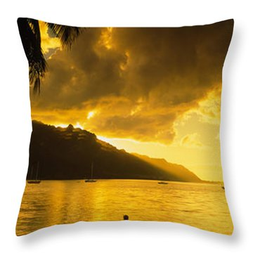 Silhouette Of Palm Trees At Dusk, Cooks Throw Pillow by Panoramic Images