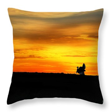 Silhouette Wild Turkey Throw Pillow by Dan Friend