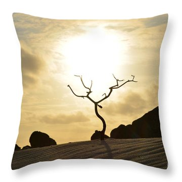 Silhouetted Tree At Dawn In Aruba Throw Pillow
