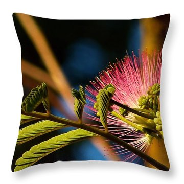 Silk At Sunrise Throw Pillow
