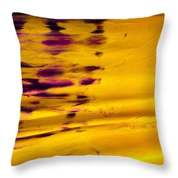 Silk River Throw Pillow