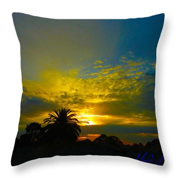 Silken Sunset Throw Pillow