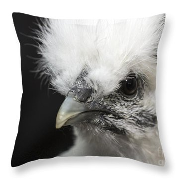 Silkie Chicken Portrait Throw Pillow by Jeannette Hunt