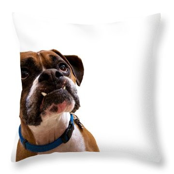 Silly Boxer Dog Throw Pillow by Stephanie McDowell