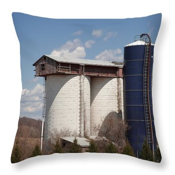 Silo House With A View - Color Throw Pillow by Carol Lynn Coronios