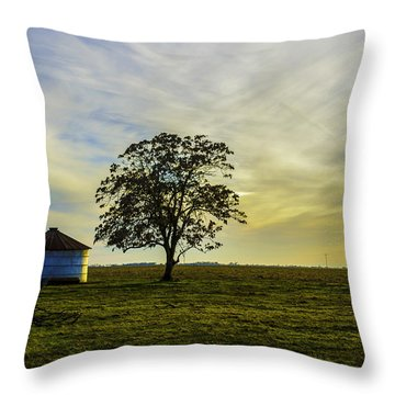Silos At Sunset Throw Pillow