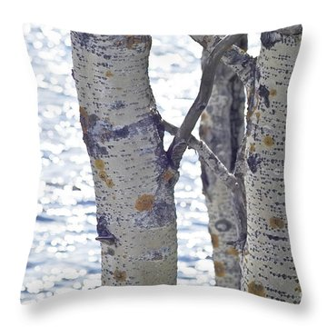 Silver Birch Trees At A Sunny Lake Throw Pillow