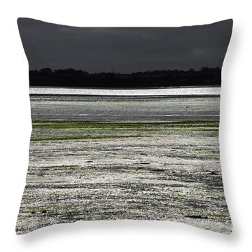 Silver Breeze Throw Pillow by Svetlana Sewell