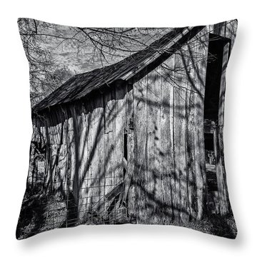 Silver Grey Throw Pillow by CJ Schmit