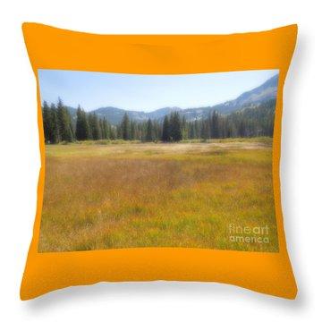 Silver Lake Area Big Cottonwood Canyon Utah Throw Pillow