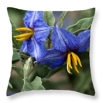 Throw Pillow featuring the photograph Silver Leaf Blooms by Mae Wertz