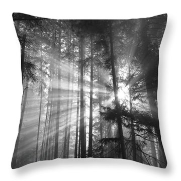Silver Light Throw Pillow