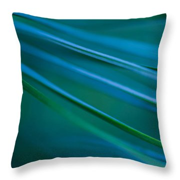 Throw Pillow featuring the photograph Silver Pine by Jacqui Boonstra