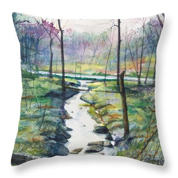 Silver Ribbon Stream Throw Pillow by Patricia Allingham Carlson