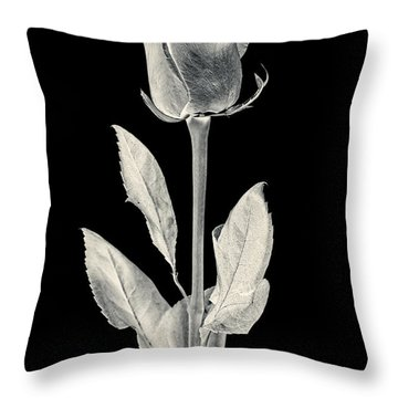 Silver Rose Throw Pillow by Adam Romanowicz