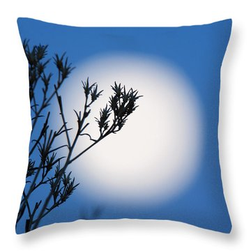 Throw Pillow featuring the photograph Silver Sage by Jim Garrison