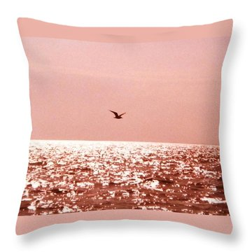 Silvery Seagull Solo Flight Throw Pillow by Belinda Lee
