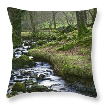 Silver Stream Throw Pillow by Trevor Chriss