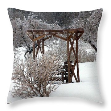 Silver Thaw Throw Pillow