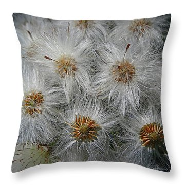 Silver Threads Throw Pillow by Nick Kloepping