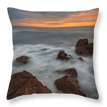 Silverlight-cambria Throw Pillow