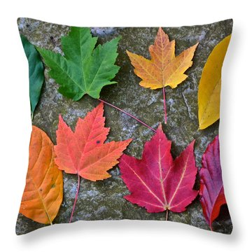 Similar But Different Throw Pillow by Frozen in Time Fine Art Photography