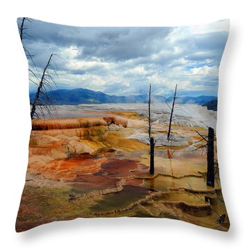 Simmering Color Throw Pillow
